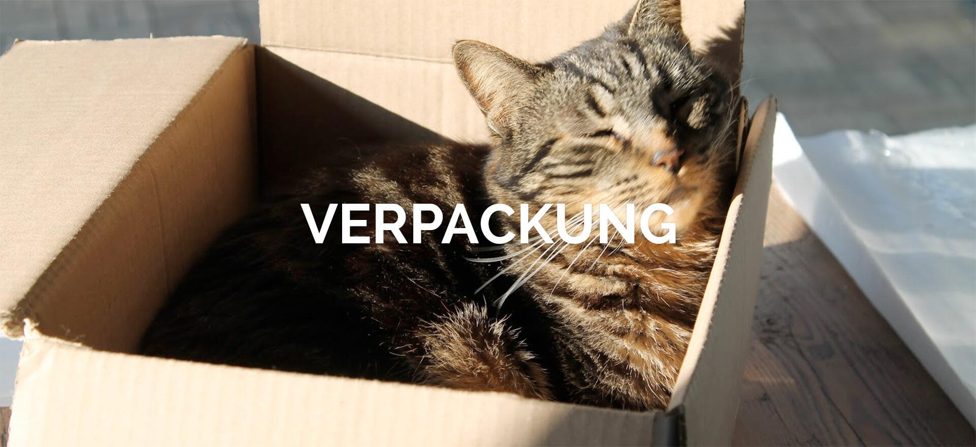 Verpackung für den Umzug in nach und von Wien